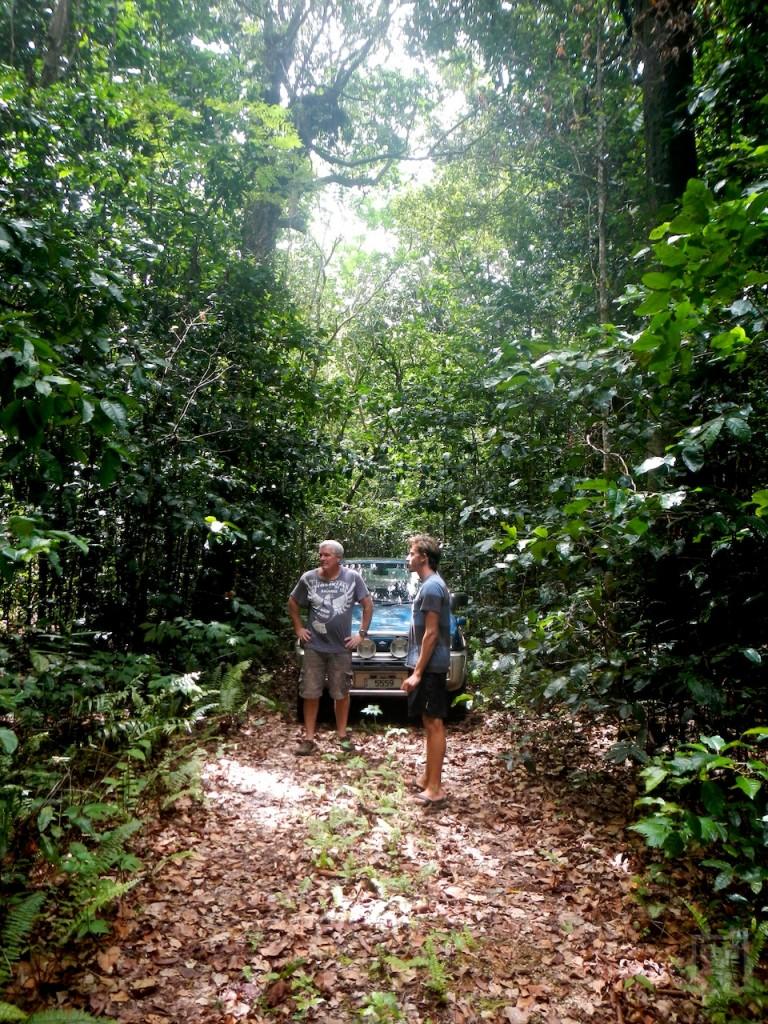 Huvalu Forest Niue
